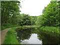 SE1015 : Huddersfield Narrow Canal, Milnsbridge, Huddersfield by Malc McDonald