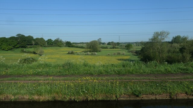 Golden fields, north-west of Little Bollington