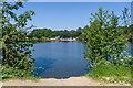 TQ2648 : New Pond by Ian Capper
