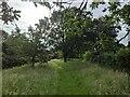TF0820 : Long grass, short grass by Bob Harvey