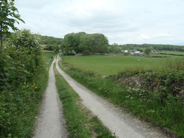 Spring Bank Road