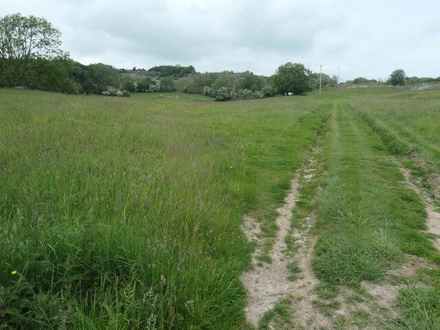 Farm track heading higher from High Farm