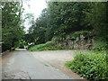 SD4078 : Small limestone quarry, Hampsfell Road by Christine Johnstone