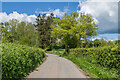 SO4134 : Lane near Cockyard by Ian Capper