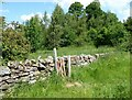 NY6718 : Footpath gate by Bandley Wood by Adrian Taylor