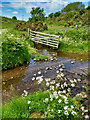 NT9726 : Ford, Humbleton Beck by Mick Garratt