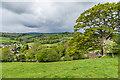 SO3928 : Above Ewyas Harold by Ian Capper