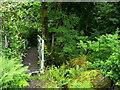 SE1505 : The Kirklees Way leaving Upper House towards Hepworth by Humphrey Bolton