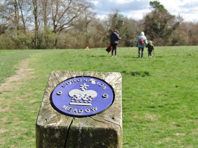West Horsley - Coronation Meadow
