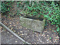 SJ9490 : Watering trough, Hyde Bank by Mr Red
