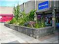 SE1422 : Flower bed outside St Vincent's, Briggate, Brighouse by Humphrey Bolton