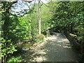 SE1754 : Six  Dales  Trail  alongside  Fewston  Reservoir by Martin Dawes
