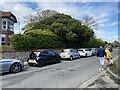 TV4899 : Pine, Sutton Road, Seaford by Robin Stott