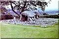 SH5822 : Neolithic burial chamber at Dyffryn Ardudwy, 1981 by Nigel Thompson