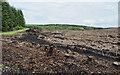 NN8945 : Clear-felled plantation by Trevor Littlewood