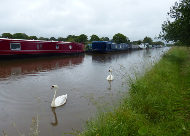 Narrowboats moored along the Shropshire Union Canal