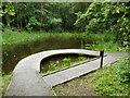 NN7201 : Dipping platform, Doune Ponds by Richard Sutcliffe