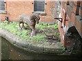 SJ8497 : Canalside sculptures by Gerald England