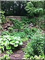 SK3182 : Garden with stepping stones, Whinfell Quarry Garden, Whirlow, Sheffield by Alan Paxton
