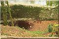 SX7963 : Drinking Well, Staverton Ford Plantation by Derek Harper