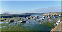 J3829 : Newcastle Harbour by Eric Jones