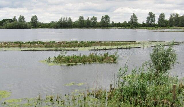 Fen Drayton Lakes - Moore Lake