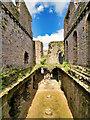 SE1287 : Great Hall, Middleham Castle by David Dixon
