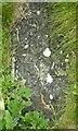 NM0447 : Tiree - Kirkapol - Carved grave slab, church of St Columba by Rob Farrow