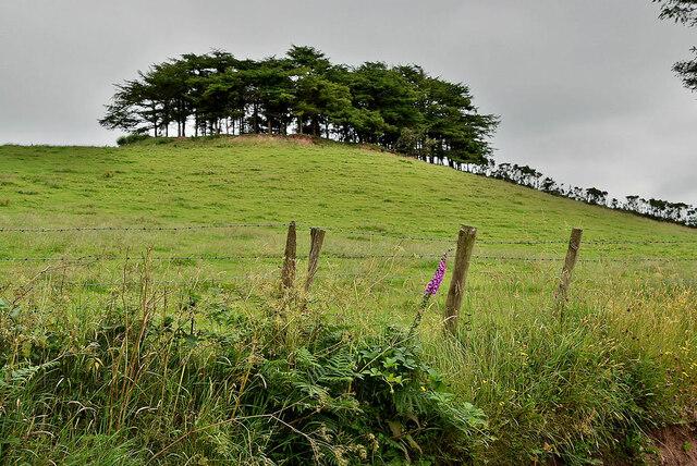 Rath on a hill, Aghafad