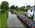 SJ5559 : Narrowboats moored along the Shropshire Union Canal by Mat Fascione