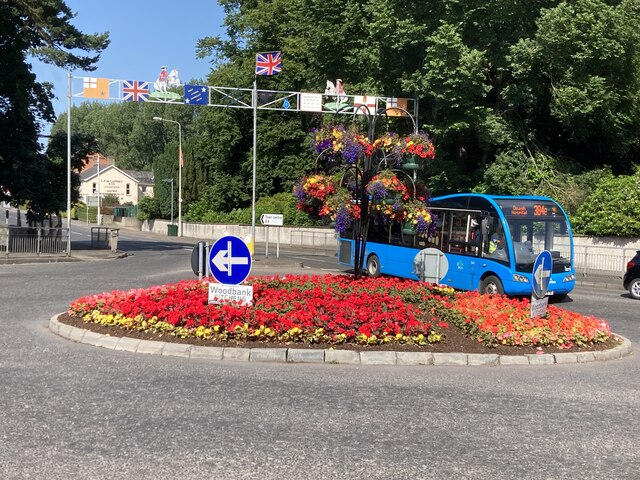 Floral display, Swinging Bars Roundabout, Omagh