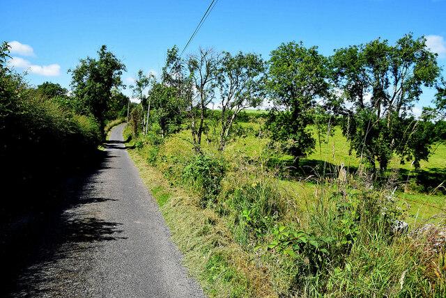 Shadows along Dunmullan Road