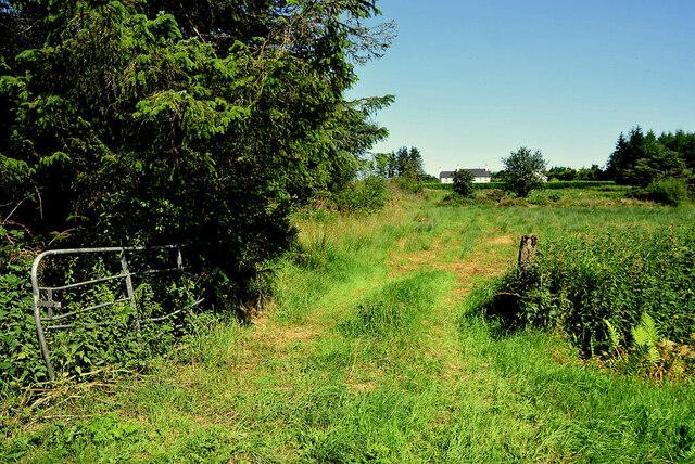 An open field, Ballynamullan