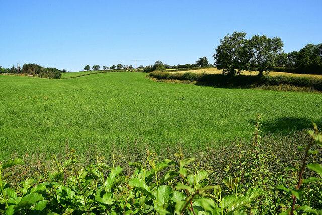 A long sloping field, Tirquin