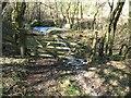 NY2433 : The Cumbria Way near Hall's Beck by Adrian Taylor