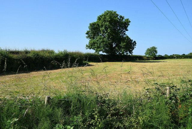 A cropped field, Recarson
