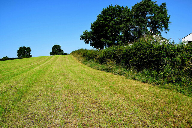 Harvested field, Recarson
