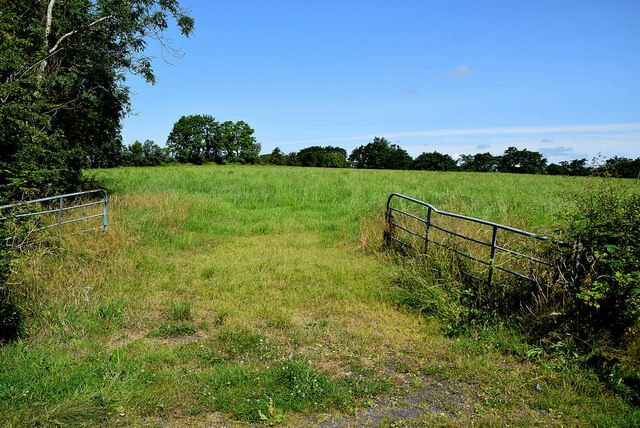 An open field, Recarson