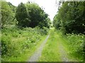 SN6861 : Former railway trackbed by Philip Halling