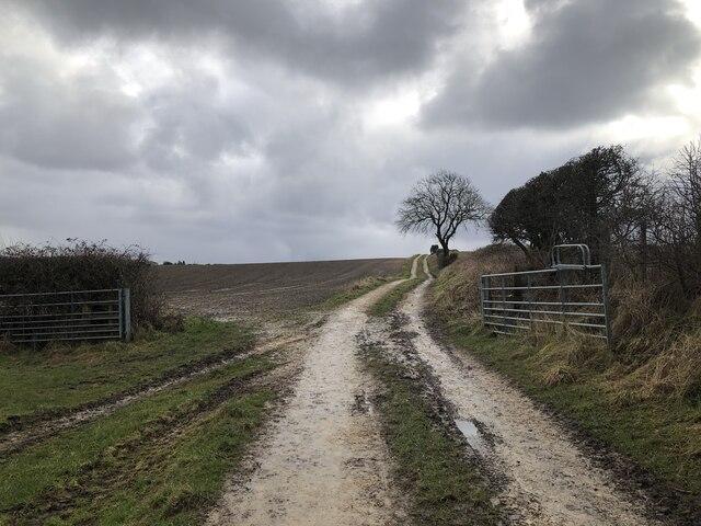 Farm track near Thornley