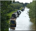 SJ5958 : Narrowboats moored along the Shropshire Union Canal by Mat Fascione