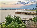ST4777 : Portishead Pier by David Dixon