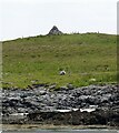 NM0746 : Tiree - Cairn on Soa by Rob Farrow