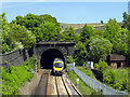 SE0008 : Western entrance to the Standedge Railway Tunnel by habiloid