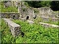 SO5808 : Darkhill Ironworks by Philip Halling