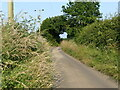TG3530 : Bend in Nash's Lane by David Pashley