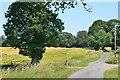 NY0988 : Annandale Way near Lochbrow by Jim Barton