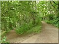 SE2935 : Footpath junction on Woodhouse Ridge by Stephen Craven