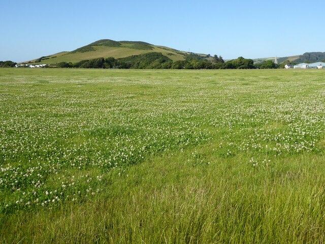 Grassland near Llanrhystud