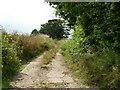 TG2834 : New Road a broken concrete Cul de sac by David Pashley